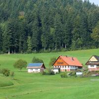 Hotel Pictures: Wallemehof, Wolfach