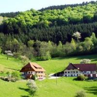 Hotelbilleder: Morgethof, Wolfach