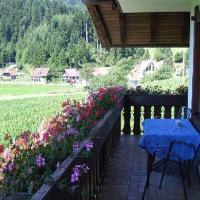 Hotelbilleder: Kriegerhof, Fischerbach