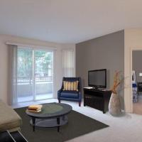 One Bedroom - Apartment
