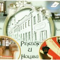 Hotel Pictures: Penzion U Holubů Nový Jičín, Nový Jičín