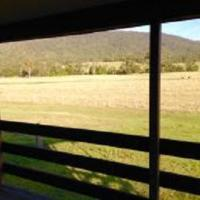 Hotel Pictures: Gumnuts Farm Resort, Canungra