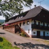 Hotel Pictures: Ferienwohnung Willmann, Steinach