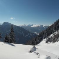 Hotel Pictures: Ferienwohnung Plattner, Schmirn