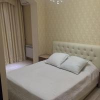 酒店图片: 斯韦特兰娜加酒店 , 索契