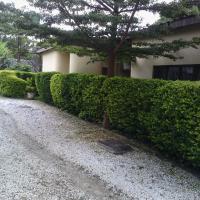 Zdjęcia hotelu: Zebra Guest House, Lusaka