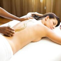 Special Offer - Double Room with Ayurveda Mini Detox Package