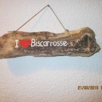 Hotel Pictures: Les Cottages 10 et 17, Biscarrosse-Plage
