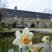 Hotel Pictures: Gite Montbriaume, Planquery