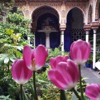 Hotel Pictures: B&B Bayt al Andalus, Antwerp
