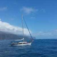 Ocean View Madeira