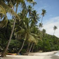 Hotel Pictures: Matana Beach Resort - Dive Kadavu, Navuatu