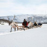 Hotel Pictures: Holiday Village Valle, Utsjoki