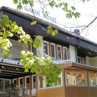 Hotel Pictures: Hotel Garni Torkelbündte, Bad Ragaz
