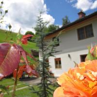 Hotel Pictures: Heidi's Schlummerkiste, Breitenau am Hochlantsch