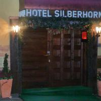 Hotel Pictures: Hotel Silberhorn, Erlangen