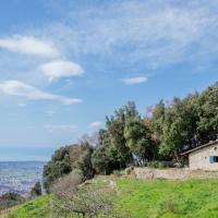 Monticolegno's Hills