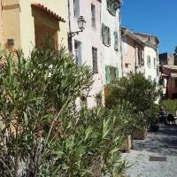 Hotel Pictures: Le Tournebride, Solliès-Ville