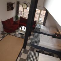 amazing historical appartment