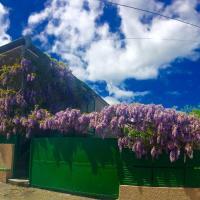 Φωτογραφίες: GuestHouse Natali, Telavi