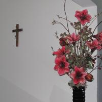Hotel Pictures: Pousada Flor Dos Ipês, Trindade