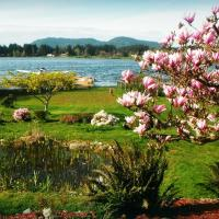 Quamichan Lakehouse Bed & Breakfast