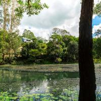 Hotel Pictures: Maleny Wildlife Holiday House, Maleny