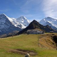 Hotel Pictures: Berghaus Männlichen, Grindelwald