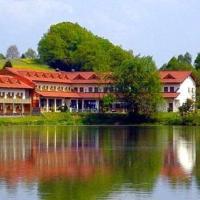 Hotel Pictures: Appartement im Hotel-Gasthof zum Seebogen - Schmid Werner, Arrach