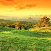 Hotel Pictures: Maleny Springs Farm, Maleny