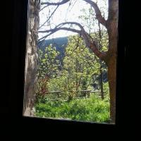 Hotel Pictures: Albergue Casa Fumenal, Padarniu
