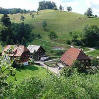 Hotelbilleder: Vogtadeshof, Wolfach