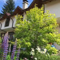 Hotel Pictures: Guesthouse Elizabeth, Samokov