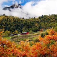 Hotel Pictures: A Bu Lu Zi Eco-Lodge, Jiuzhaigou, Jiuzhaigou