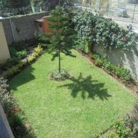 Hotel Pictures: Zema's Guest House, Addis Ababa