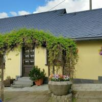 Hotel Pictures: Ferienhaus Riedl, Klingenthal