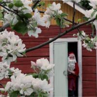 Hotel Pictures: Joulupukin piilopirtti, Mikkeli