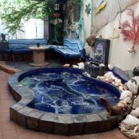Hotel Pictures: Tropical Retreat Millner, Darwin