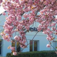 Hotel Pictures: Campanile Reims Est - Taissy, Taissy
