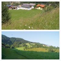 Hotel Pictures: Zeffererhof, Pichl