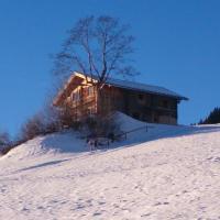 Hotel Pictures: Ferienhütte Georg, Hippach