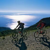 Special Offer - Studio with Bike Tour