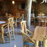 Hotel Pictures: Hostal Turismo Allipén, Melipeuco