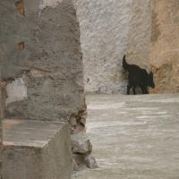 Hotel Pictures: Baronia Cal Federico, Pratdip