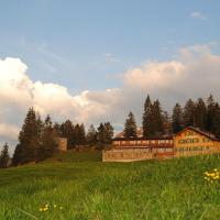 Hotel Pictures: Berghotel Sellamatt, Alt Sankt Johann
