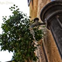 Fotos de l'hotel: Rifugio Giudeo, Balestrate