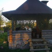 Zdjęcia hotelu: Hutor Nadberezhie, Braslaw