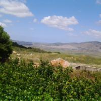 Shapira in the Galilee