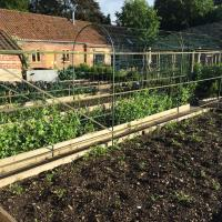 Chippenham Park Kitchen Garden Rooms