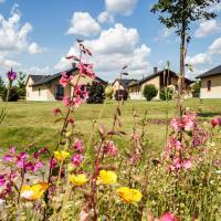 Hotel Pictures: Seepark Auenhain, Markkleeberg